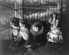 circus.+domadora