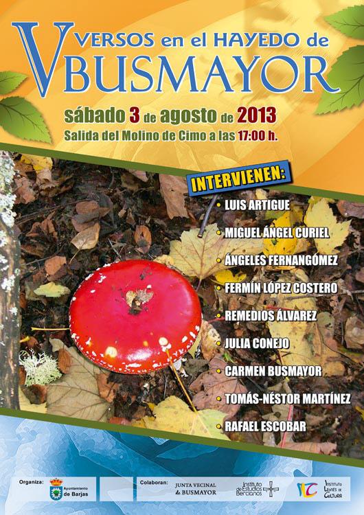 5-Versos-Hayedo-Busmayor-2013-Cartel