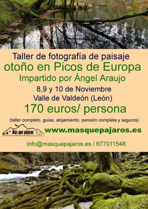 cartel ángel araújo _foto