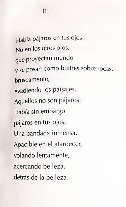 (Cortesía de Agustín Berrueta)