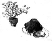© Ilustración de Avelino Fierro.