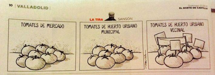 En esta tira Sansón alude a los huertos comunitarios surgidos en los últimos años en Valladolid.
