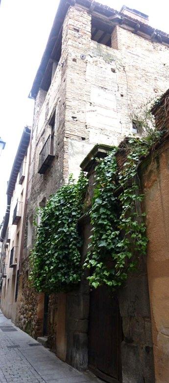 Plantas colgantes sobre muro de palacio medieval, con patio ajardinado interior…/ Valle Escuderos. Palacio de la familia Cannata.  Segovia. © Fotografía: José Carlos Sanz.