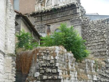 Jardín en ruinas históricas. / Catedral de Valladolid. © Fotografía: José Carlos Sanz.