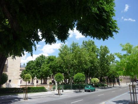 Jardín en edificios universitarios. / Calle Cardenal Mendoza. Colegio de Santa Cruz. Valladolid. © Fotografía: José Carlos Sanz.