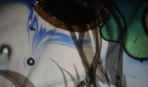 Detalle de un espectáculo de proyección de líquidos y creación de imágenes de Alexplays.