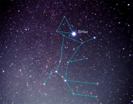 Sirio en la constelación del Can Mayor.