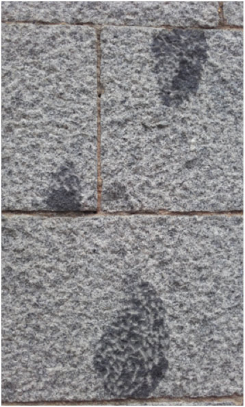 Detalle de enclaves oscuros (dioritas) en los granitoides (monzogranitos) del zócalo de la galería porticada sur (atrio) de la iglesia de San Martín.
