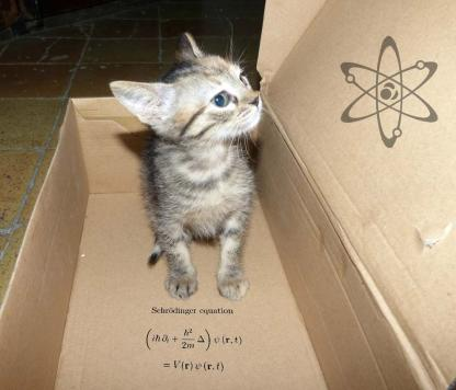 Recreación de la paradoja de Schrödinger.