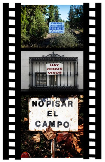 Cancamusa 21. Agosto 2016. © Fotografías: José Ramón Vega.