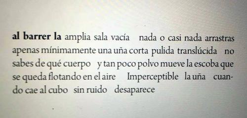 Captura de un poema del libro.