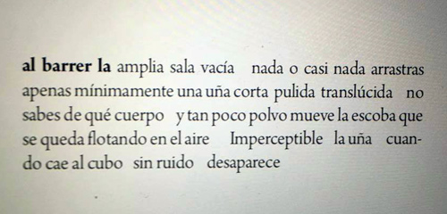 Captura de un poema del libro.