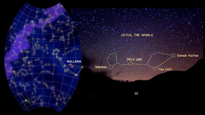 Constelación Cetus.