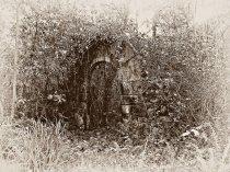 Entrada incierta a un jardín. © Ilustración: José Carlos Sanz Belloso.