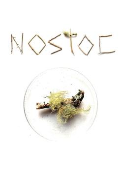 Nostoc, imagen promocional de Taxón. Cortesía de los artistas.