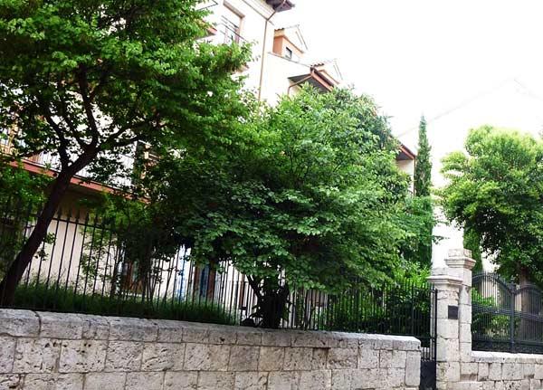 F10. Vista de unos jardines de viviendas con fachadas retrasadas de la línea de calle, próximos a la catedral de Valladolid.