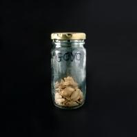 Ernesto Goyo Monsanto . Fotografía: Cortesía Musac