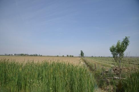 Canal de Castilla. Fotografía: Cortesía de las artistas.