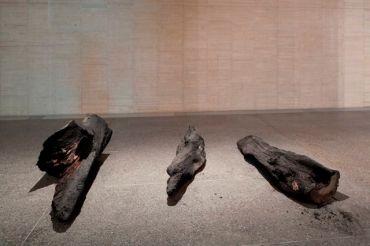 herman de vries burned III, 2014-2015 Colección MUSAC