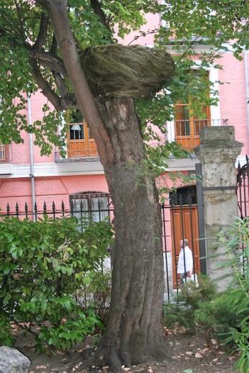 """""""Nido de escoba"""", de Carmen Madreñarroja, en el jardín de la Fundación."""