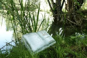 Basia Irland. Libros congelados del río Bernesga, León, España, 2017. Colección MUSAC