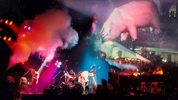 El cerdo de Pink Floyd ha dado para muchas chanzas.jpg