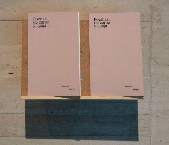 'Poemas de sangre y aguja' (2019), de Mareva Mayo. Exposición '(D)escribir el mundo'. MUSAC, 2019.