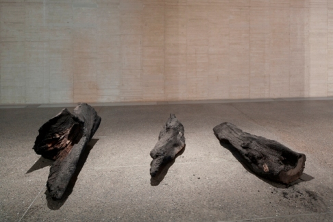herman de vries burned III, 2014-2015. Colección MUSAC.