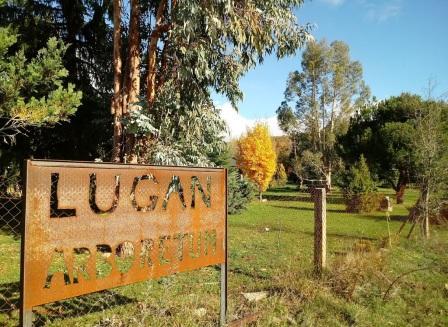 Arboreto de Lugan.