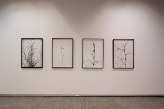 Vistas de 'Intervalo lúcido. Consciencias del espacio'. Ana Frechilla.